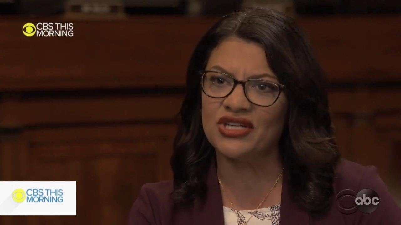 Tulsi Gabbard and Rashida Tlaib only House Dems who voted ...