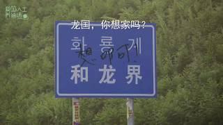 용냥이의 고향/화룡의 용/김용국 용국 金龙国的故乡 和龙
