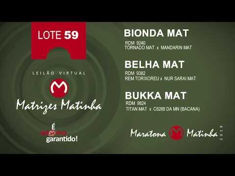 LOTE 59 Matrizes Matinha 2019