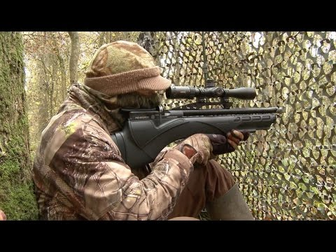 The Airgun Show – hunting squirrels with the Daystate Renegade PLUS the Air Arms Galahad on test