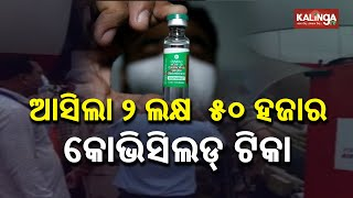 COVID: Odisha Government Receives 2.5 Lakh Vaccine Dose Today II Kalinga TV