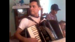 Baile da Tartaruga - sanfoneiro Raimundo Paixao. Brazilian Accordion music