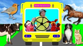 Wheels On The Bus What Do You See? Song with Matt | Animals | Learn English Kids