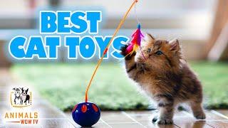 Los 10 mejores juguetes para gatos que puedes comprar en línea 2021