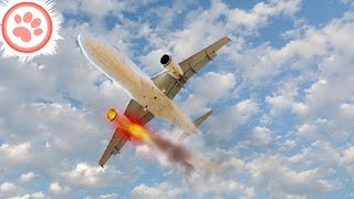 Top 10 Airlines - 10 Saddest Last Words From Pilots About to Crash