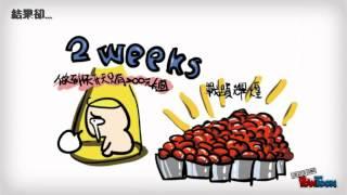 T-WHY 台灣打工度假青年