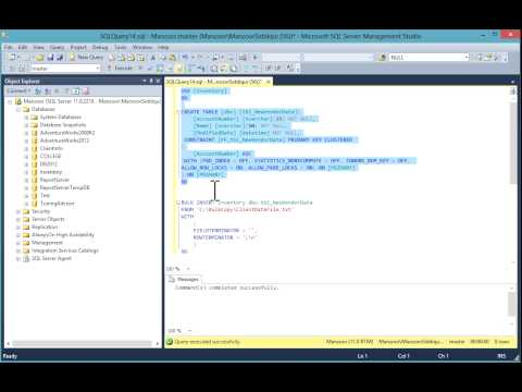 Use BULK INSERT to load text files into SQL Server Database [HD]