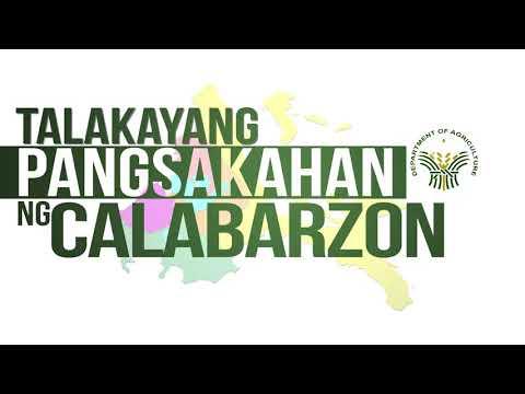 Talakayang Pangsakahan ng CALABARZON Episode 7 with Chief Administrative Officer Felix Ilagan Ramos