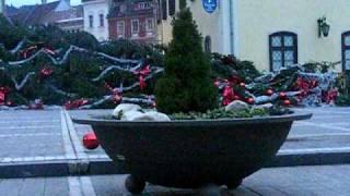 Cade bradul in Piata Sfatului - Brasov 2008.avi