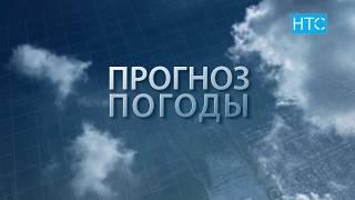 Прогноз погоды в Кыргызстане на 17.07.19 / НТС