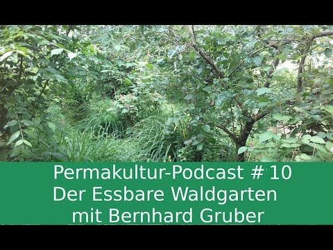 Permakultur-Podcast #10 / Der essbare Waldgarten mit Bernhard Gruber