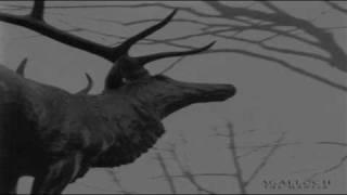 Agalloch - A desolation song (sutbtitulos español)