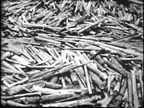 USFS - Archival Footage - Historic Log Drives of the Northern Region