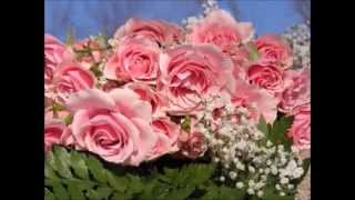 STRAUSS jr. JOHANN Roses from the South-Waltz op.388