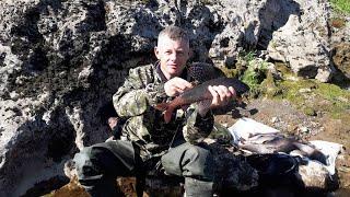 Рыбалка на горной реке Супер клев огромного хариуса Часть 2