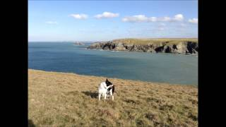 West Pentire, Cornwall
