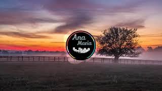 Alan Walker - The World Of Walker (24/7 Live Radio)