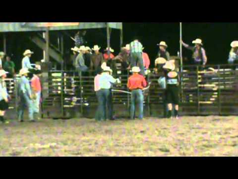 2012 Mullen Nebraska Bull Team Champions