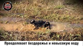 Краулер-Баггі р/у Пантера, 4WD