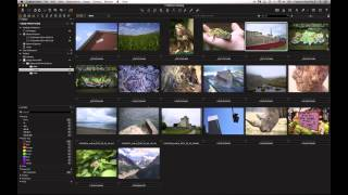 Capture One Pro 8 Webinar | How Can I Manage my Capture One Catalog?