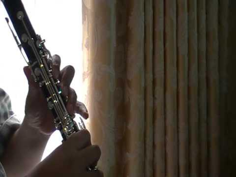 Roxas Theme Kingdom Hearts 2 On Clarinet