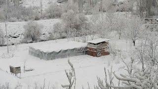 Beyaz Bir Sabah Huzur Dolu Bir Gün Kar Kış ve Kümesim