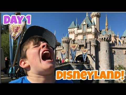 Kid Temper Tantrum Returns To Disneyland Day One - Kids Wanted To Travel By Luggage