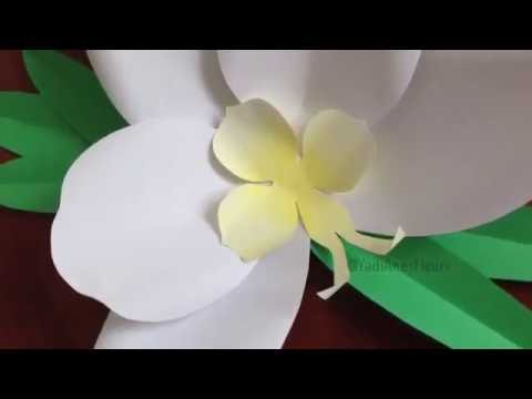 DIY Giant Paper Orchid