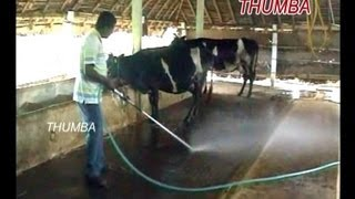 Dairy Dung Cleaning Pump : Thumba AgroTech Palani,Tamil Nadu.india.