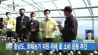 [대전뉴스] 충남도 화훼농가 지원 위해 꽃소비 운동 추…