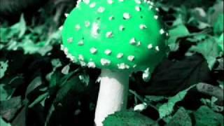 Locust- The Girl With The Fairytale Dream (AUDIO)