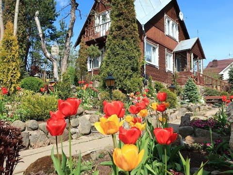 прогулка по весеннему саду