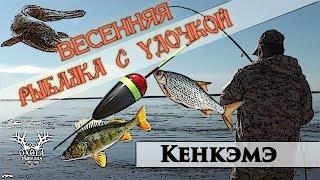 Весенняя рыбалка с удочкой