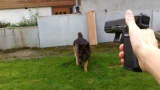 airsoft   kwa glock18c asg glock 19 asg m9