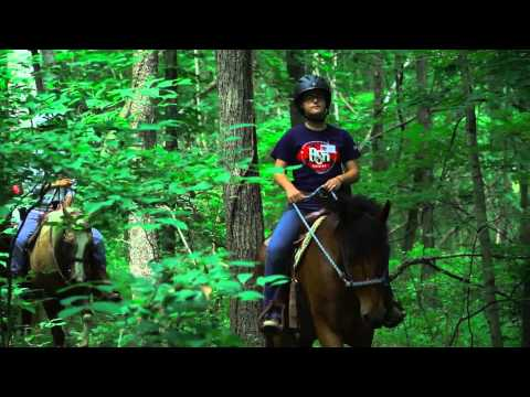 Cool Camp: Ransburg Scout Reservation, Indiana