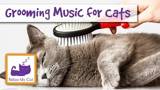 1 Hour of Grooming Music for Cats! Music for Grooming and Bathing Cats! 🐱 #GROOM03