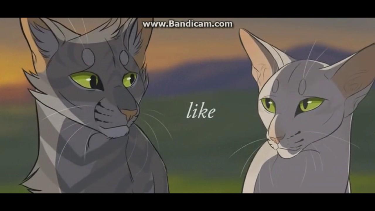 Коты воители песня миру мир