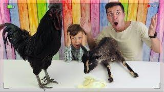 ЧЕЛЛЕНДЖ Мармеладная Еда против Настоящих Животных New Challenge Gummy Food vs Real Animals