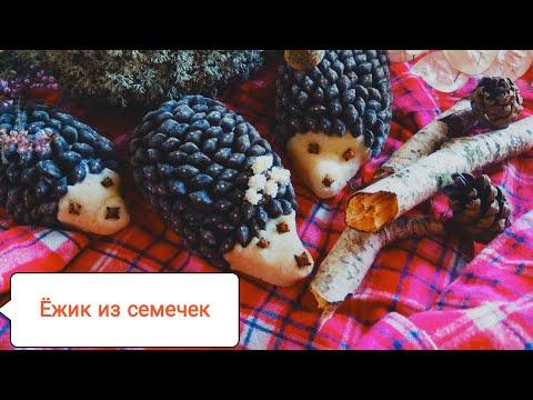 Ежик из семечек! Поделки для детей! Осенняя поделка в детский сад!Crafts With Children.