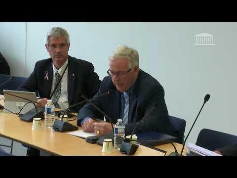 Commission des affaires étrangères : question à Amélie de Montchalin