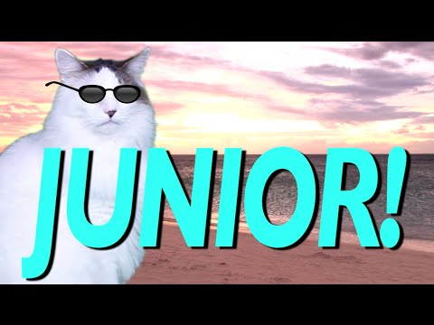 happy birthday junior epic cat happy birthday song youtube. Black Bedroom Furniture Sets. Home Design Ideas