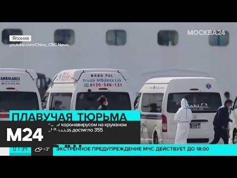 Число заразившихся коронавируса на круизном лайнере Diamond Princess достигло 355 человек - Москва…