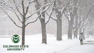 What is Thundersnow? Wнat Causes This Rare Winter Storm?