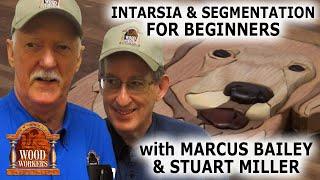 Intarsia and Segmentation (beginner s perspective)