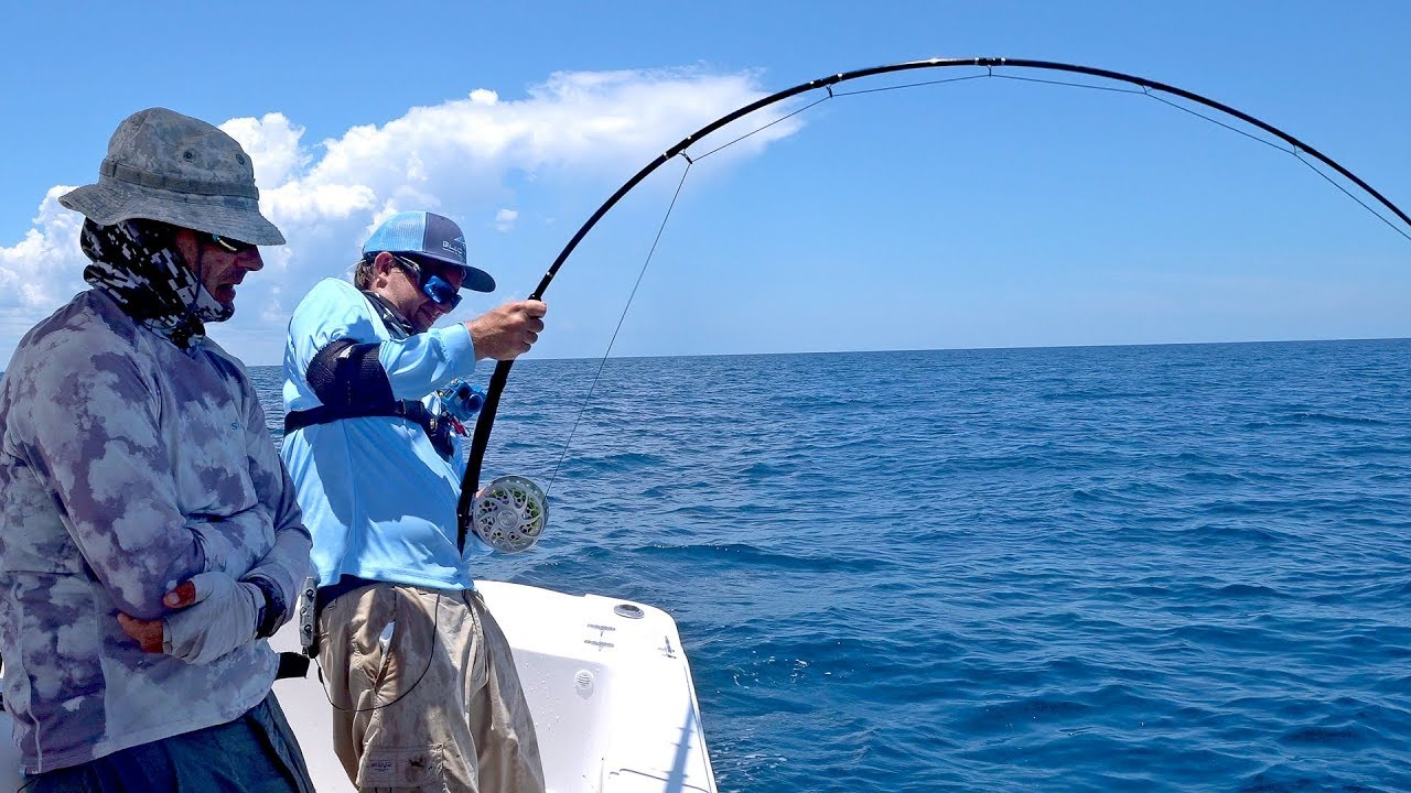 Attempting the impossible goliath grouper on fly fishing for Trout fishing supplies