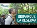 Visite un Bioparque y esto fue lo que ENCONTRÉ   Bioparque la Reserva