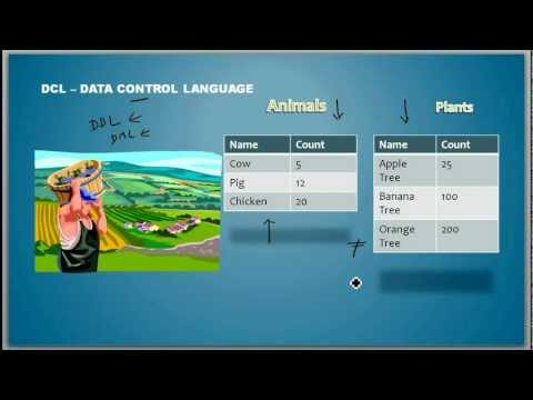 What Is A Data Control Language - Database Tutorial 7