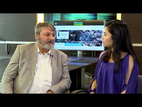 We Have Some of the Best Geologists in the Cobalt Camp, Says Castle Silver Resources (TSXV: CSR) CEO