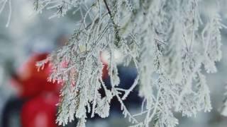видео Зимний копроративный отдых. Корпоратив зимой на природе