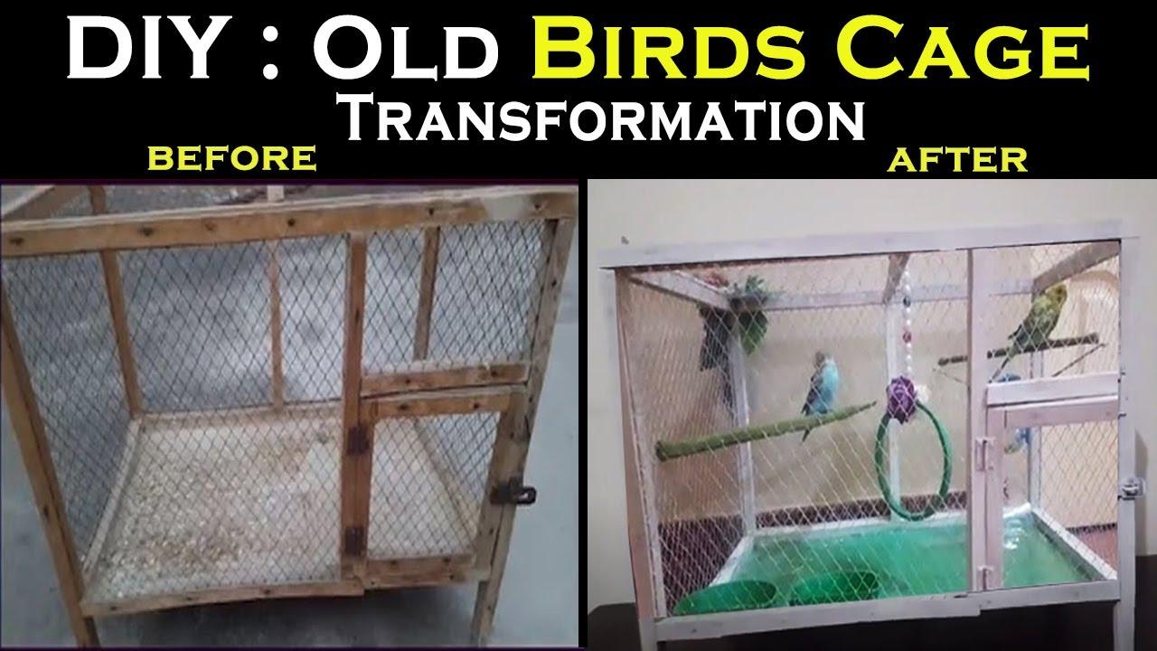Diy Old Birds Cage Transformation Afia S Galleria Youtube